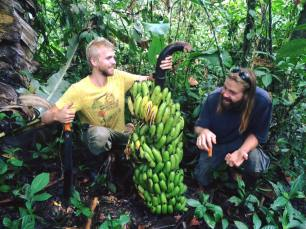 Mount Frutis food harvest (jason/matthew j.)