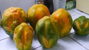 ¡mas papayas!